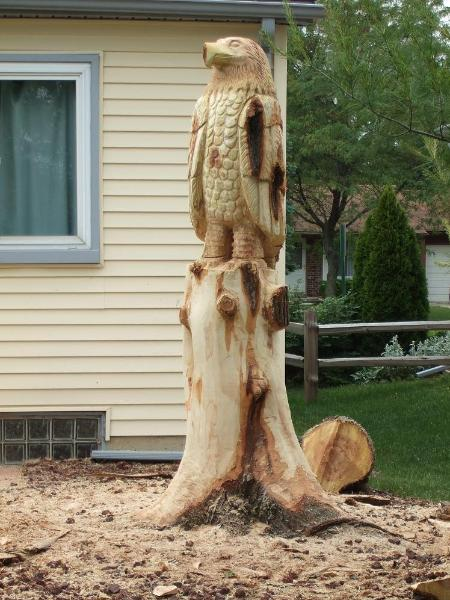 Redwood tree carving